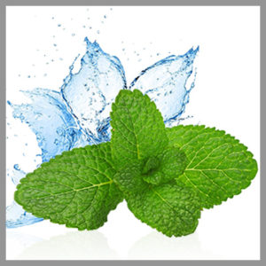 Strong Mint